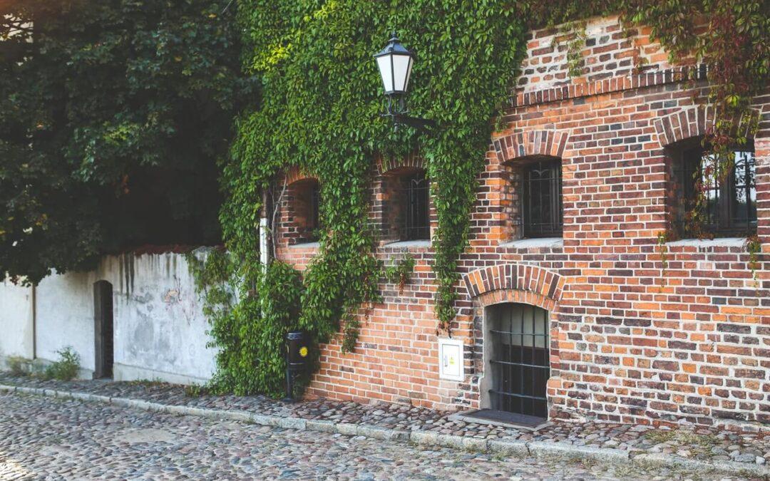 Jak znaleźć zakład pogrzebowy w Toruniu?